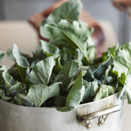 raccolto- verdure- sicilia- ortaggi